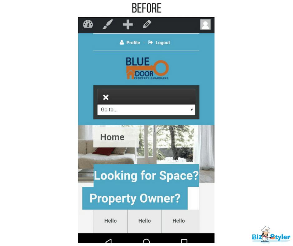 Bizstyler - Client - Blue Door Property Guardians - Website Before